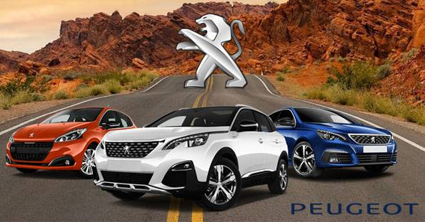 How To Reset Peugeot 301 Service Indicator Spanner Light (2012-2020)